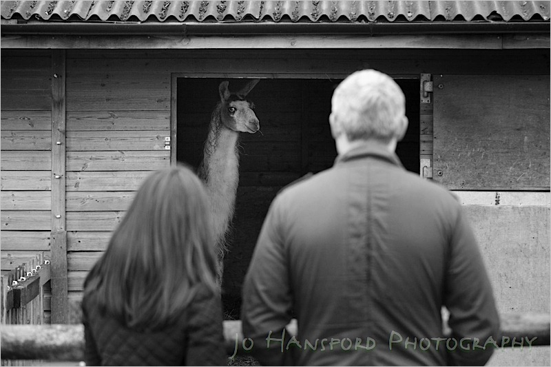 Jo Hansford Photography - Engagement Photography