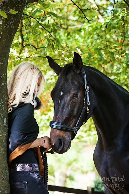 Jo Hansford Photography - Equine