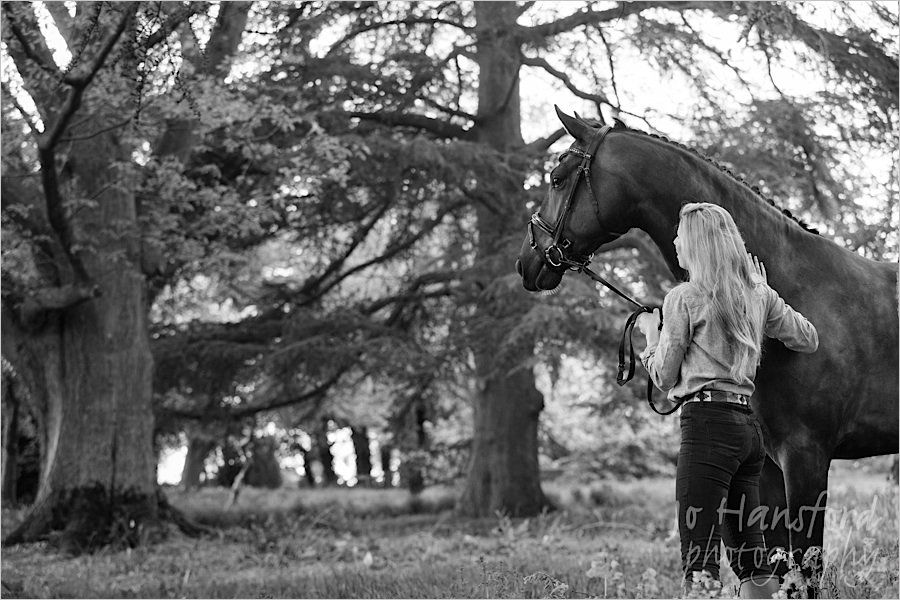 jo_hansford_photography_equine_02