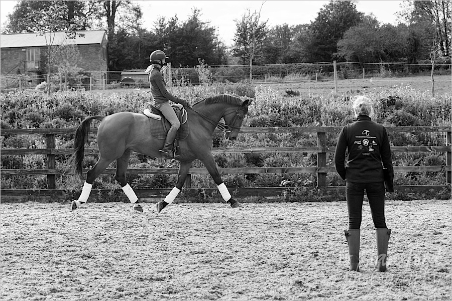 jo_hansford_photography_equine_24