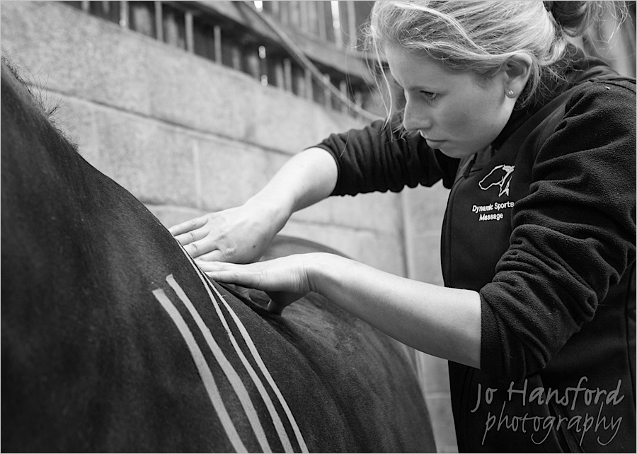 jo_hansford_photography_equine_32
