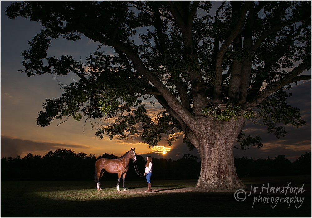 Horse photographer Jo Hansford 007 sm