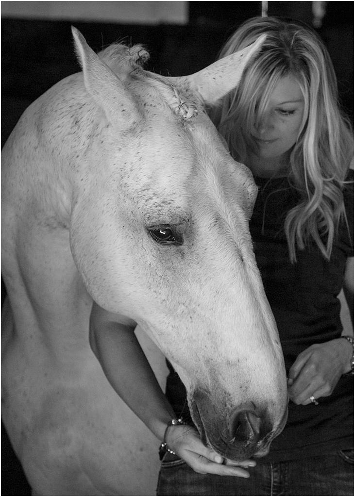 Horse_photography_Bath_Jo_Hansford_011
