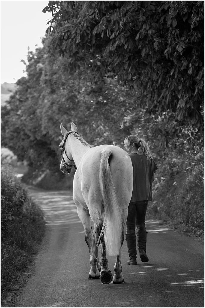 Horse_photography_Bath_Jo_Hansford_022