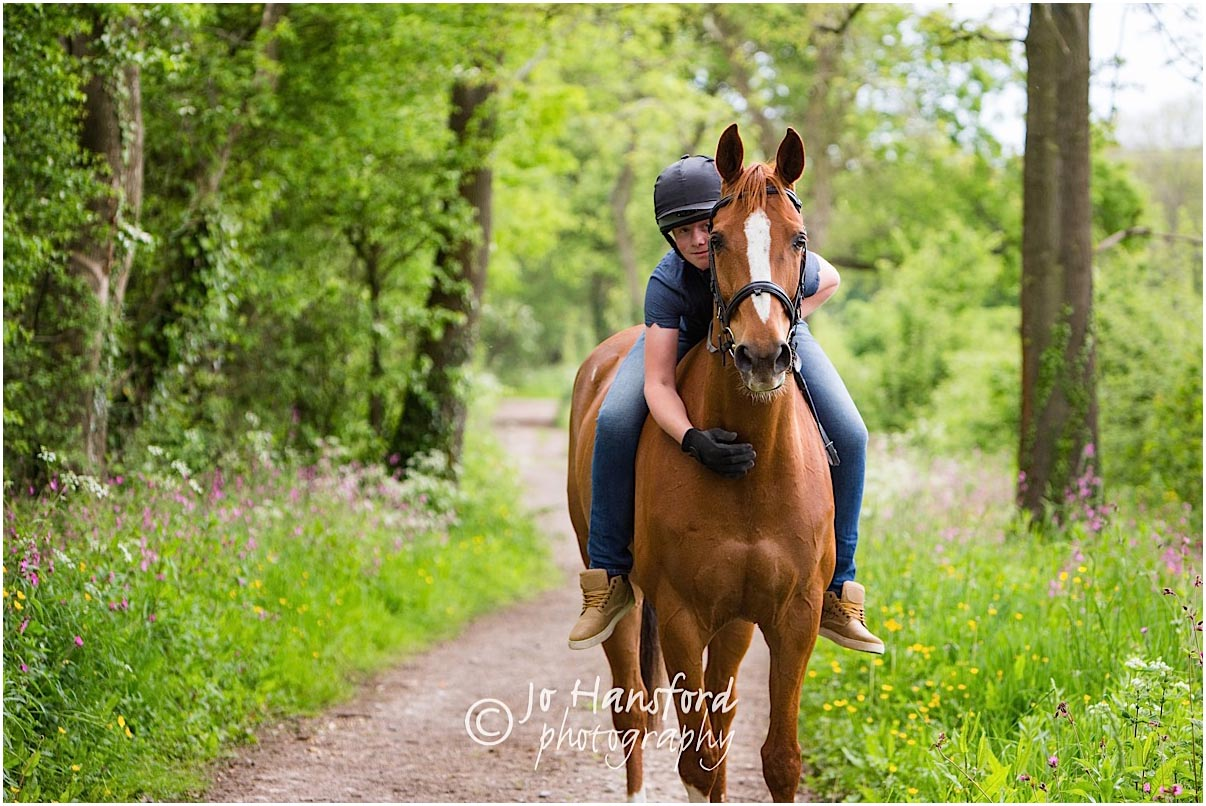 Horse_photography_Gloucestershire_Jo_Hansford_017