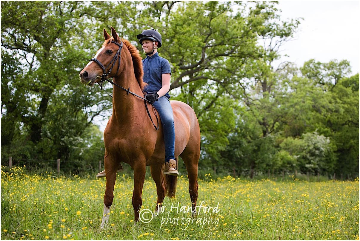 Horse_photography_Gloucestershire_Jo_Hansford_018