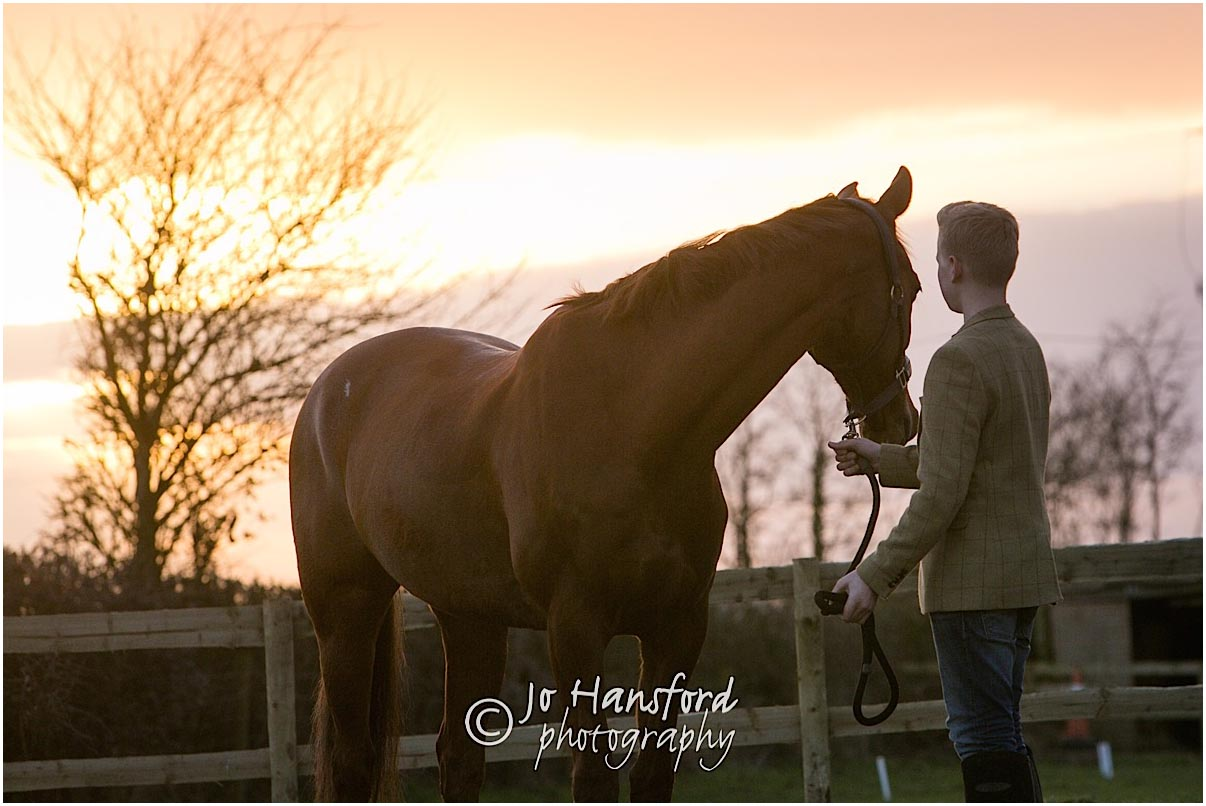 Horse_photography_Gloucestershire_Jo_Hansford_032