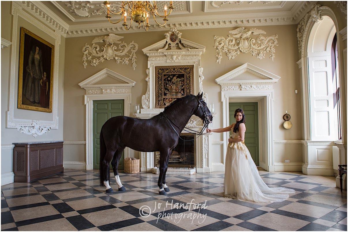 Horse wedding Jo Hansford