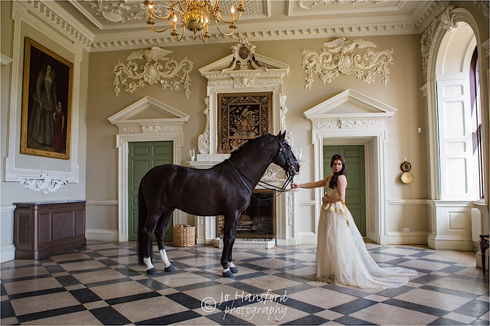 Horse wedding Jo Hansford