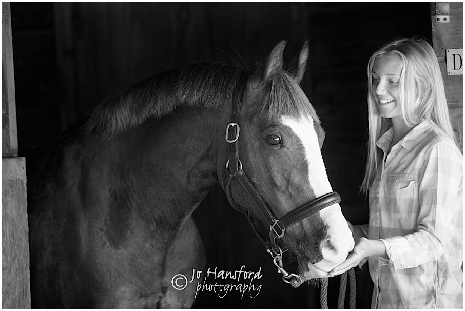 Cotswolds Horse photography Jo Hansford