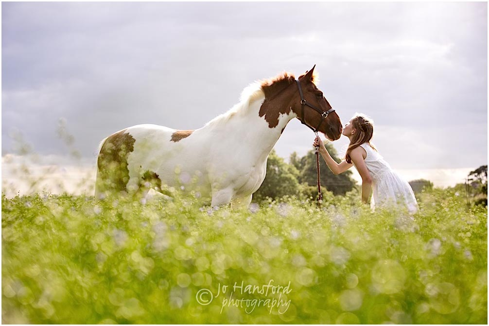 Cotswold_Horse_photographer_Jo _Hansford_038