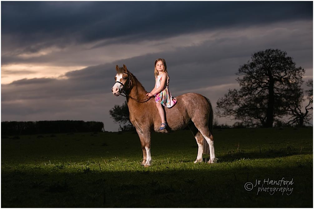 Gloucestershire horse photography Jo Hansford