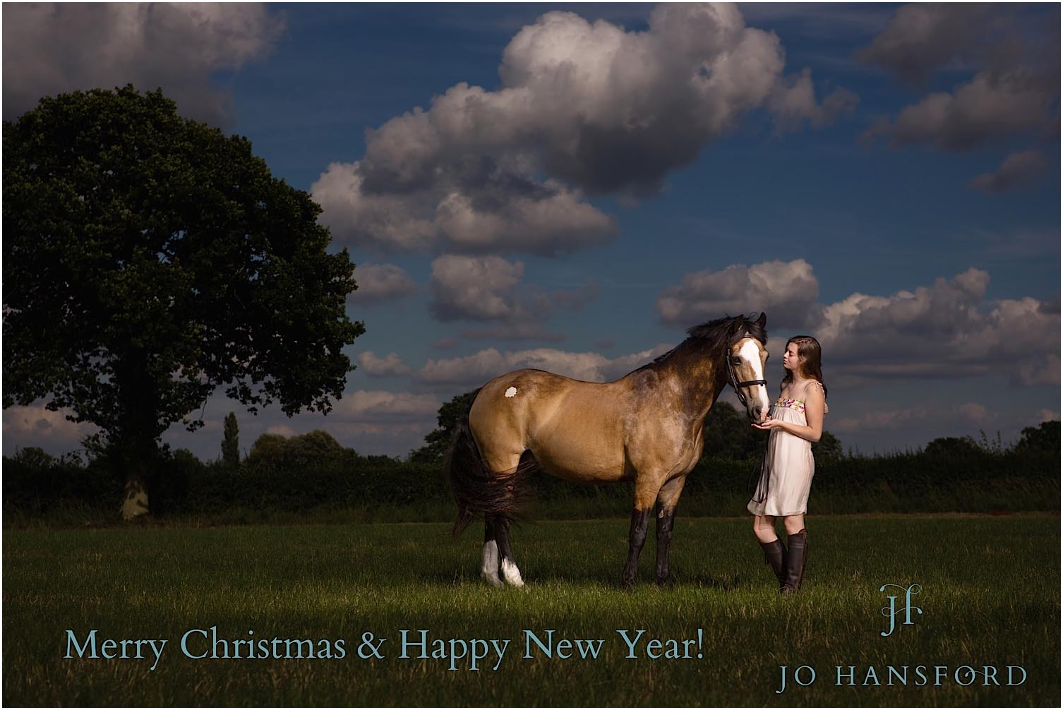 Happy Christmas 2017 From Us Wedding Family And Horse Photography By Jo Hansford