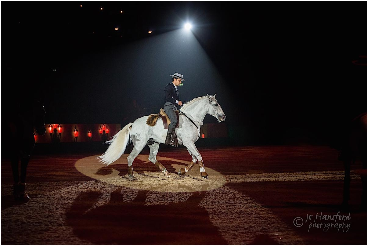 Olympia Horse Show Archives Wedding Family And Horse Photography By Jo Hansford