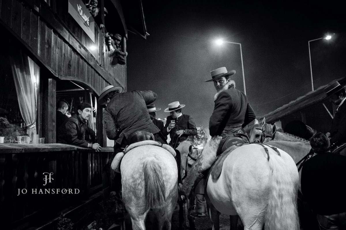 Horse photographer Golega Jo Hansford