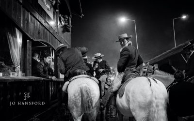 Horse photography at Golega Horse fair – Second place in SWPP Competition