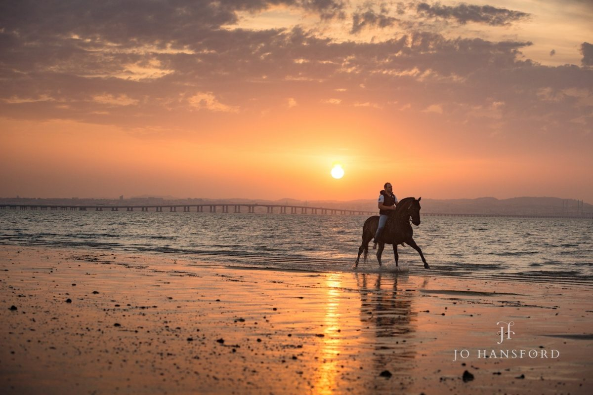 Horse photographer Portugal Jo Hansford