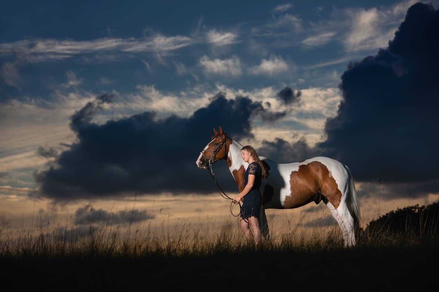 Horse photographer Berkshire Jo Hansford