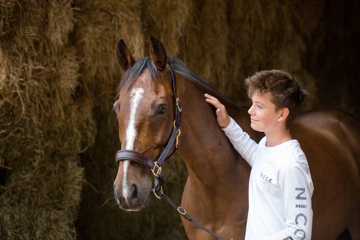 Horse phoographer Somerset Jo Hansford