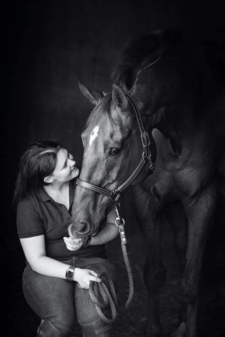 Horse photographer Hertfordshire Jo Hansford