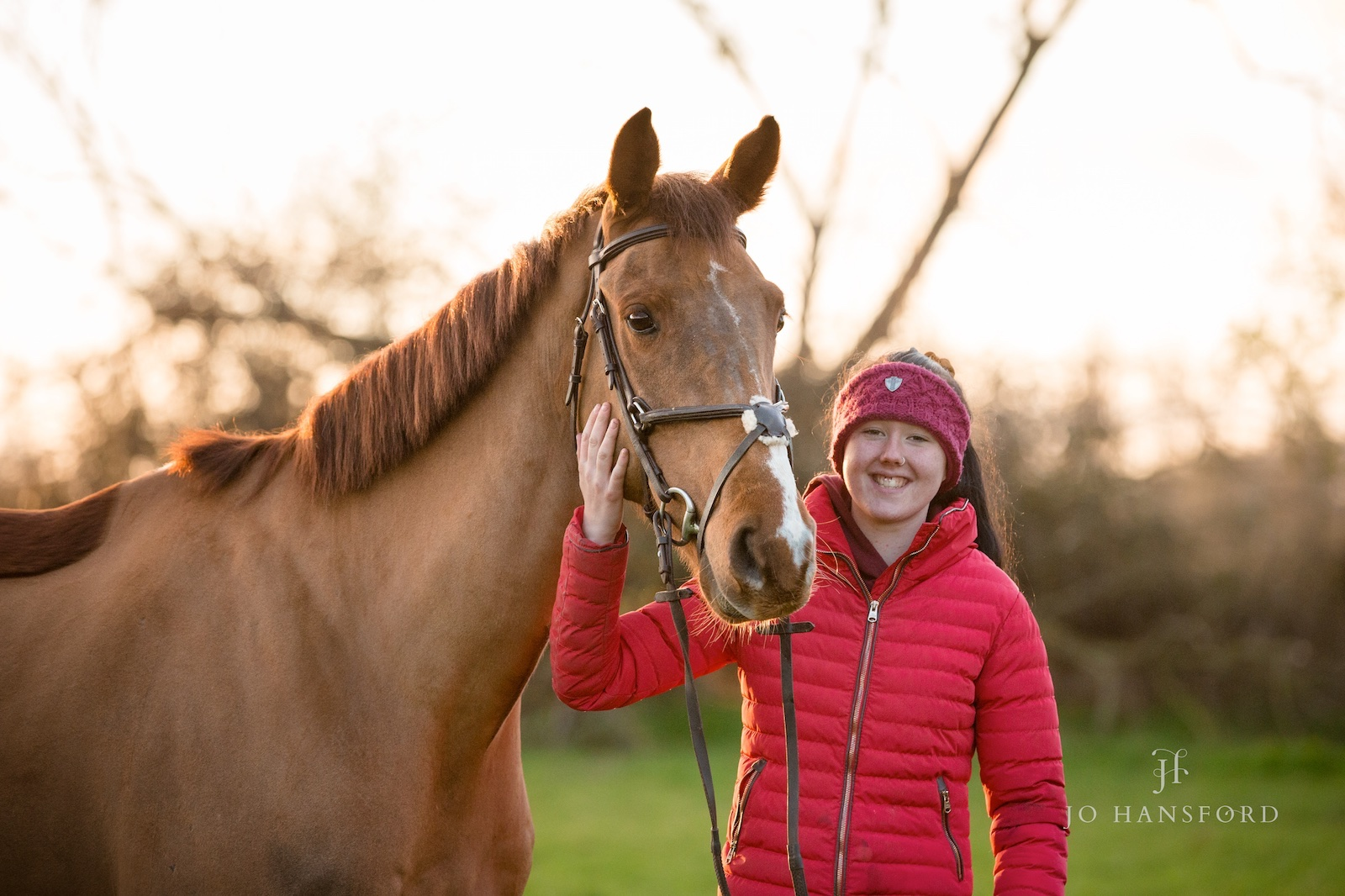 Horse photographer Gloucestershire Jo Hansford