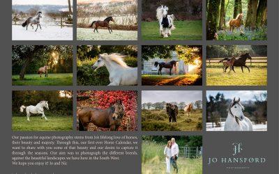 New Equine Calendar