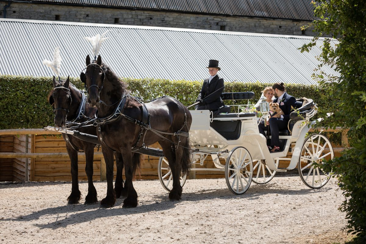 Horse and wedding photographer Jo Hansford