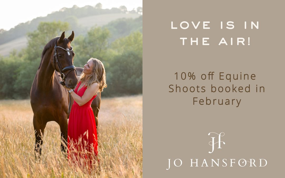 An Equine Photoshoot – the perfect Valentine's Gift!