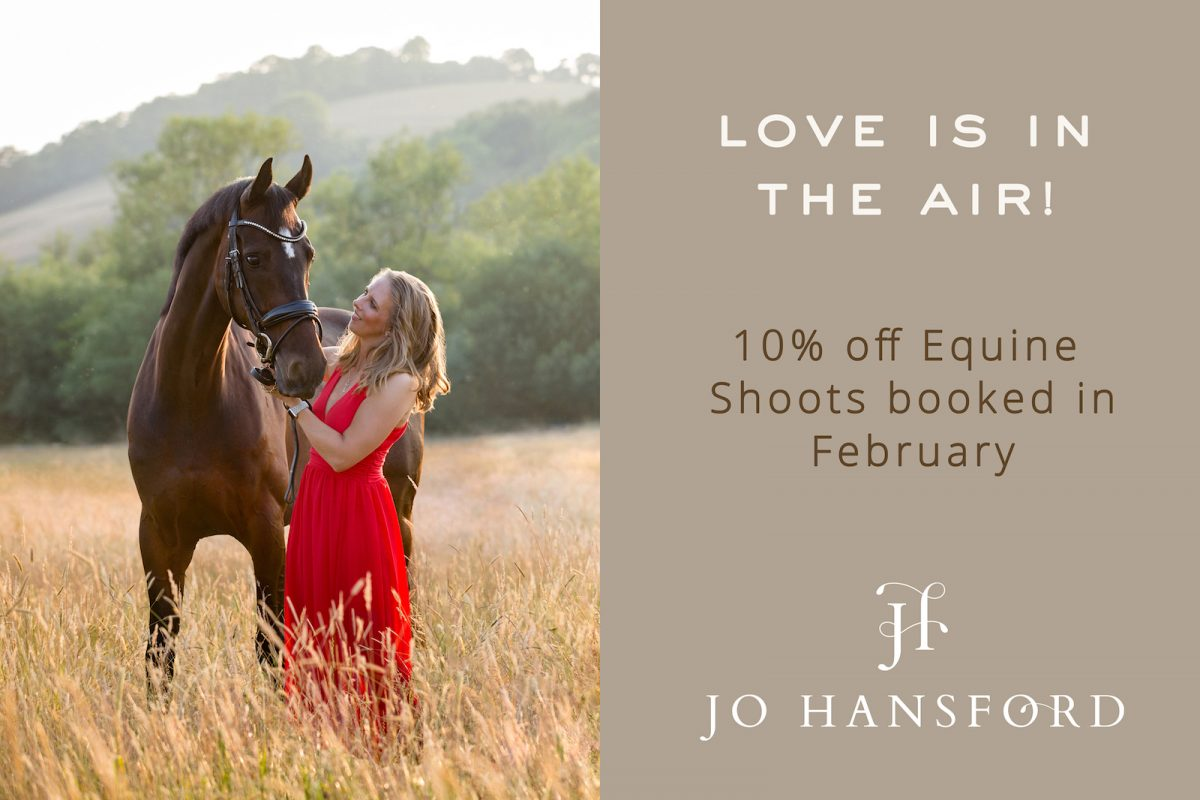 an equine photoshoot Valentines gift Jo Hansford