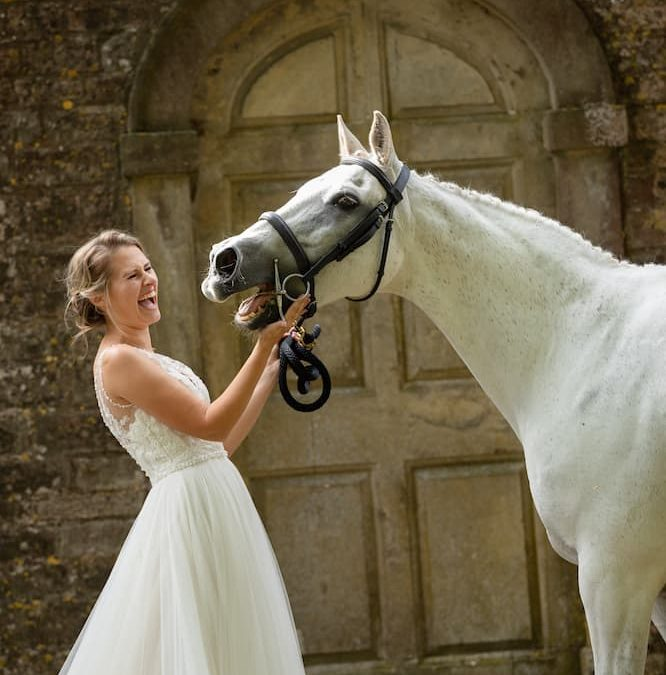 Everything You Need to Know about Having Your Horse or Pet at Your Wedding!
