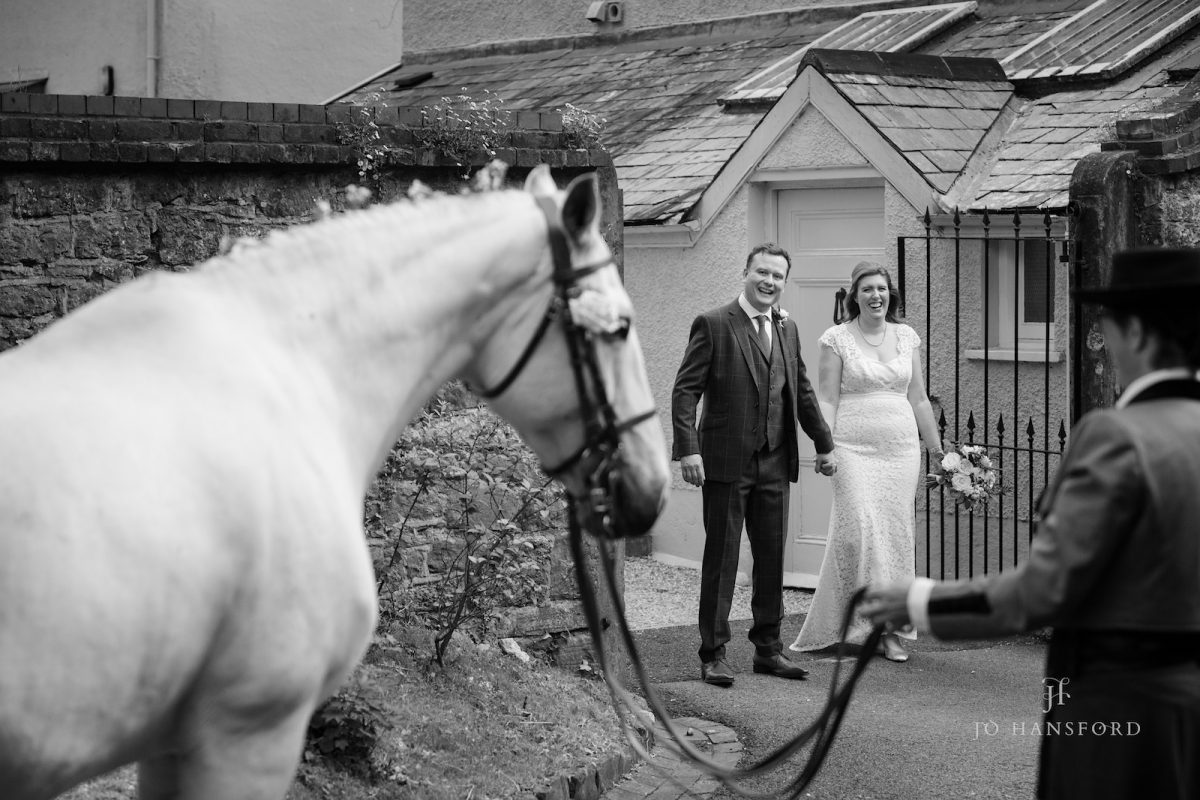 Everything you need to know about having your horse or pet at your wedding Jo Hansford