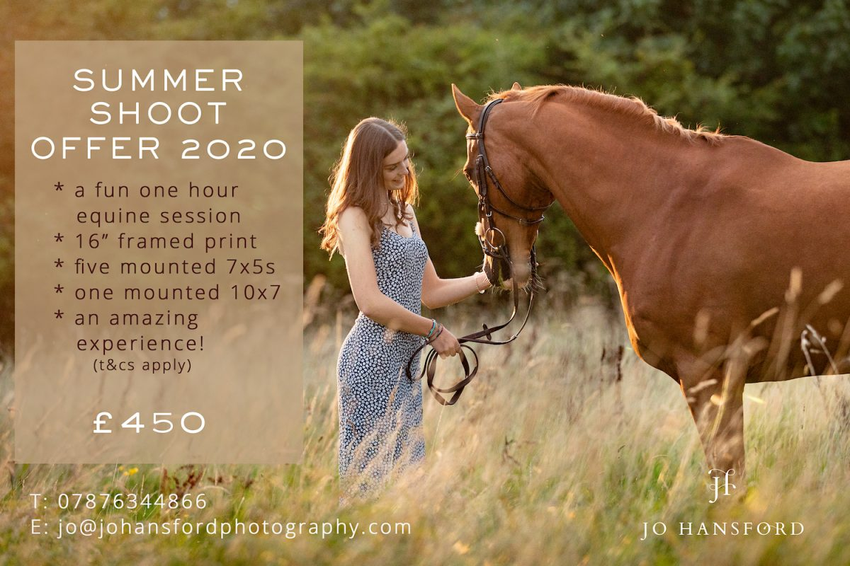 equine photography offer jo Hansford