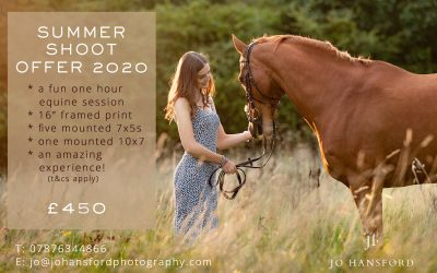 Summer 2020 Equine Photoshoot offer!