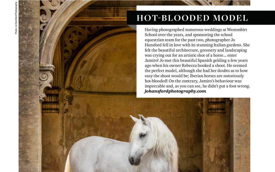 In the press – Spanish horse ' Jamiro' featured in Cotswold Life Magazine